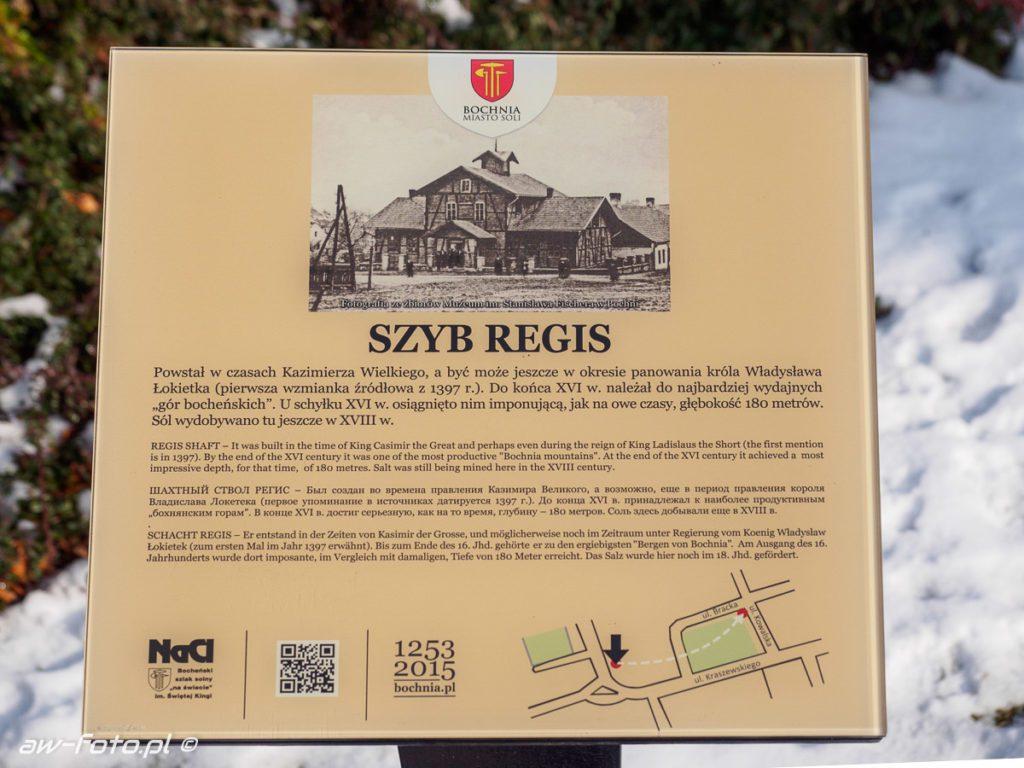 Szyb Regis w Bochni, szlak Bocheńskich wagoników (NaCl)