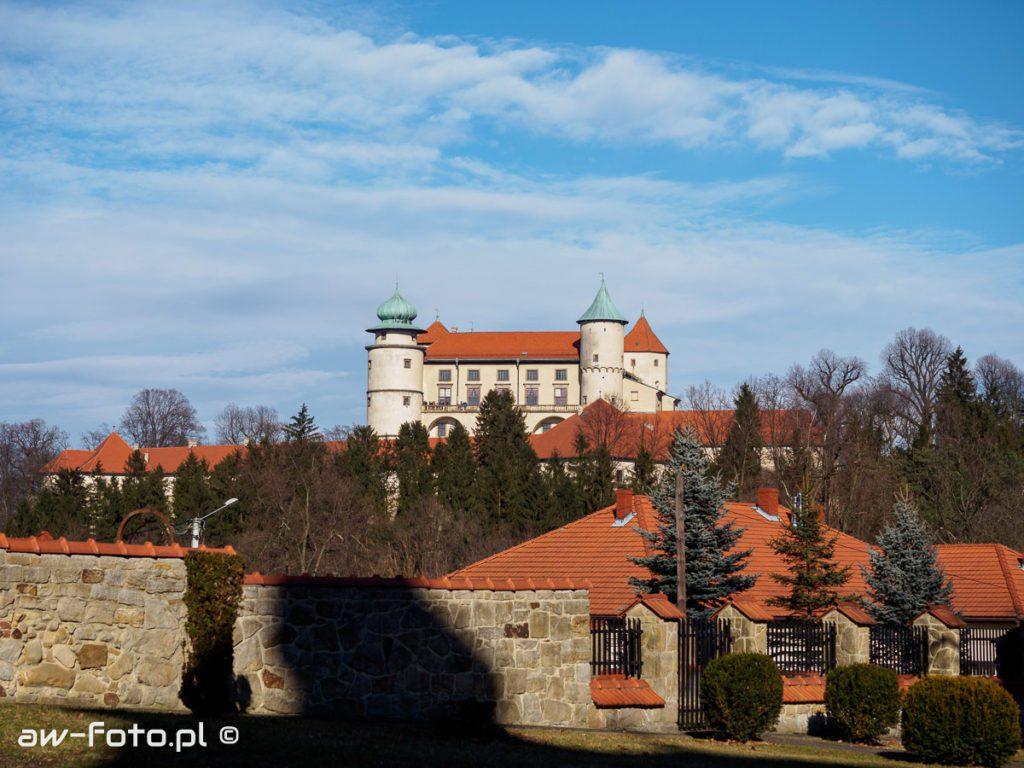 Zamek w Nowym Wiśniczu- panorama