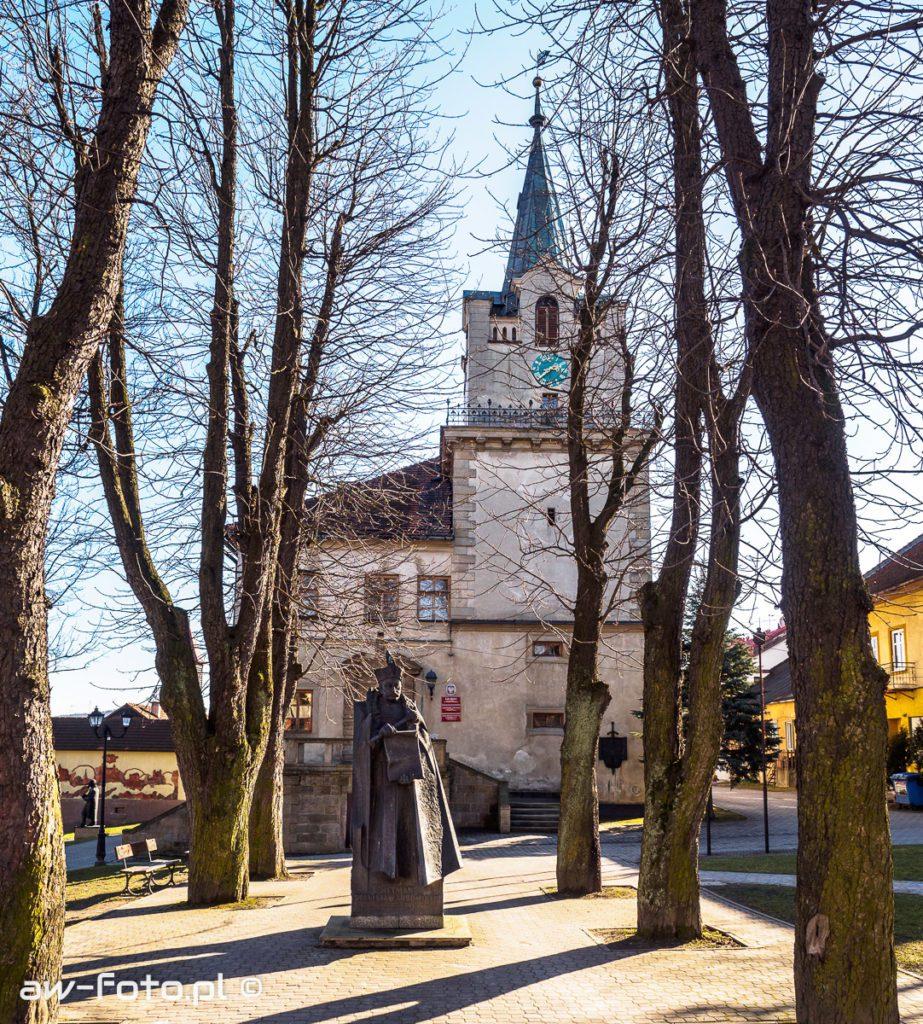 Pomnik Stanisława Lubomirskiego na tle ratusza w Nowym Wiśniczu
