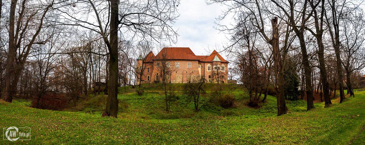 Zamek w Dębnie - panorama