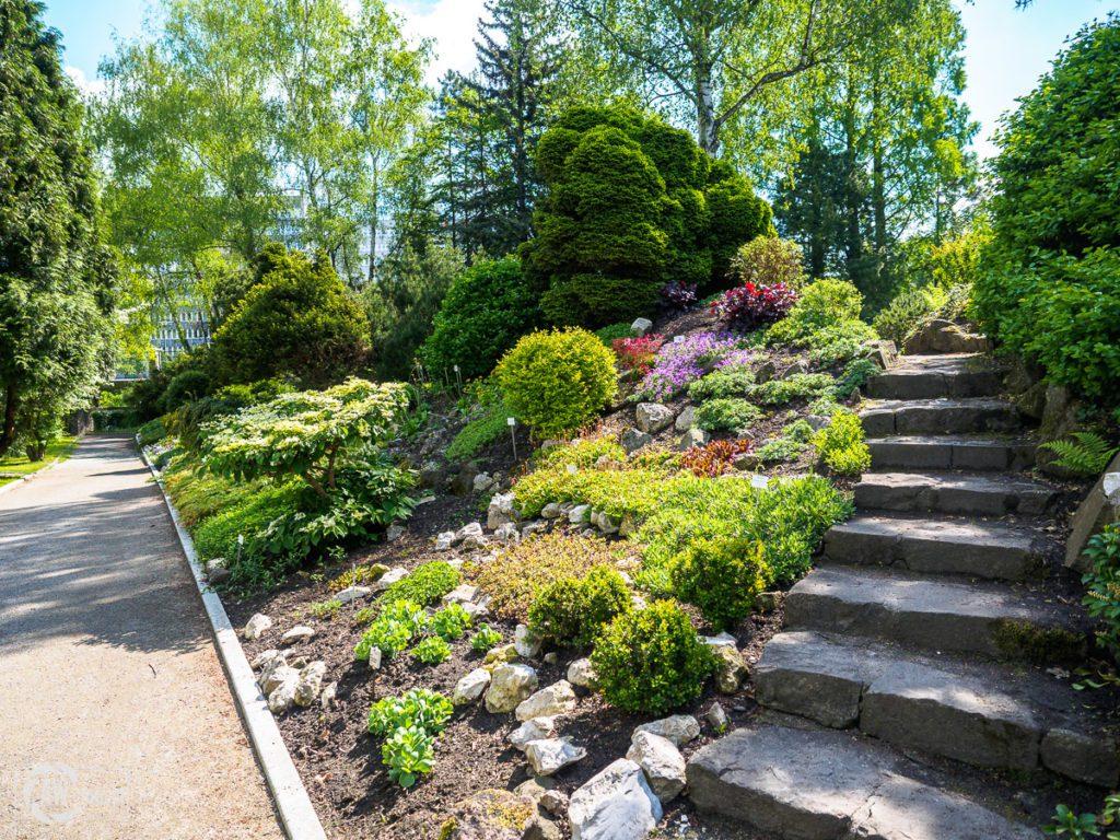 Ogród Botaniczny w Krakowie - alpinarium ozdobne