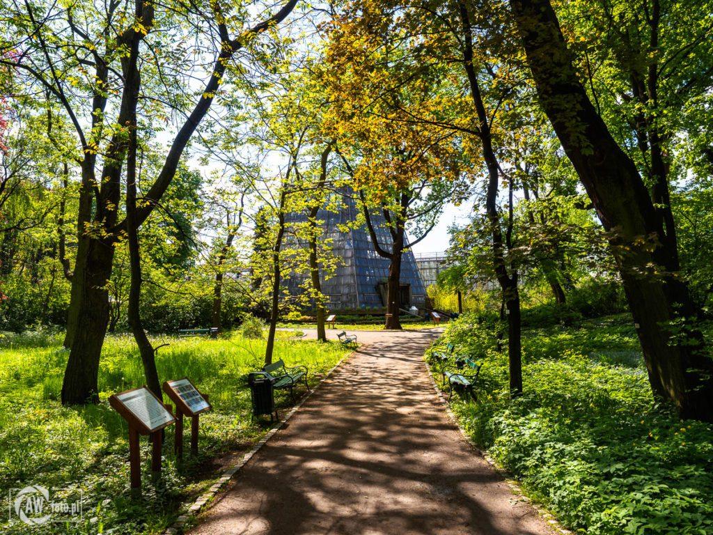 Ogród Botaniczny w Krakowie - droga do palmiarni