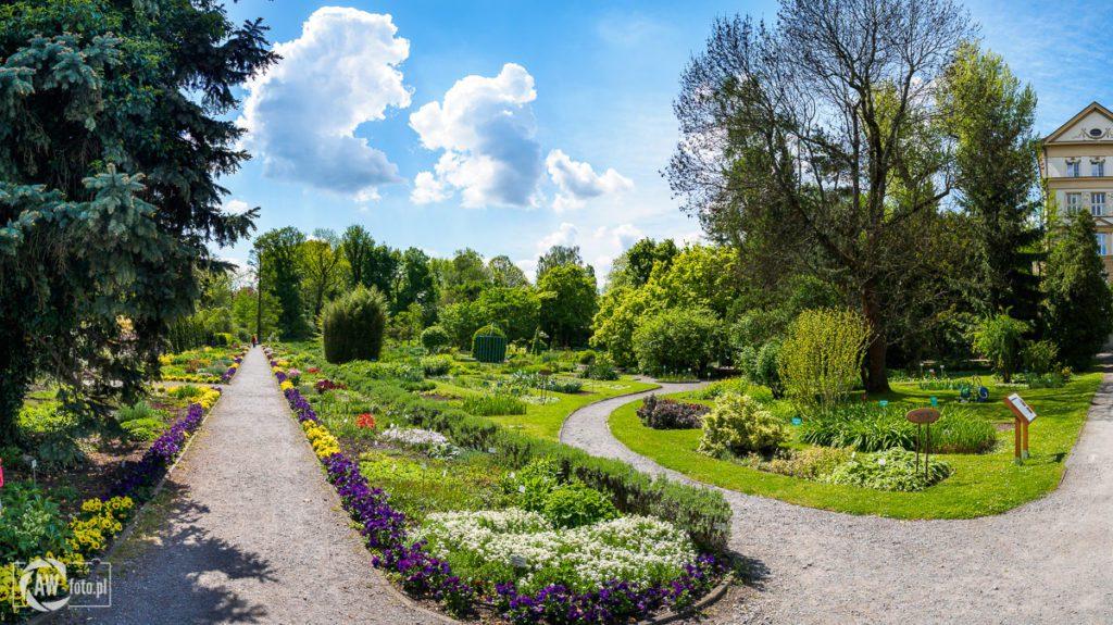 Ogród Botaniczny w Krakowie - roślinność