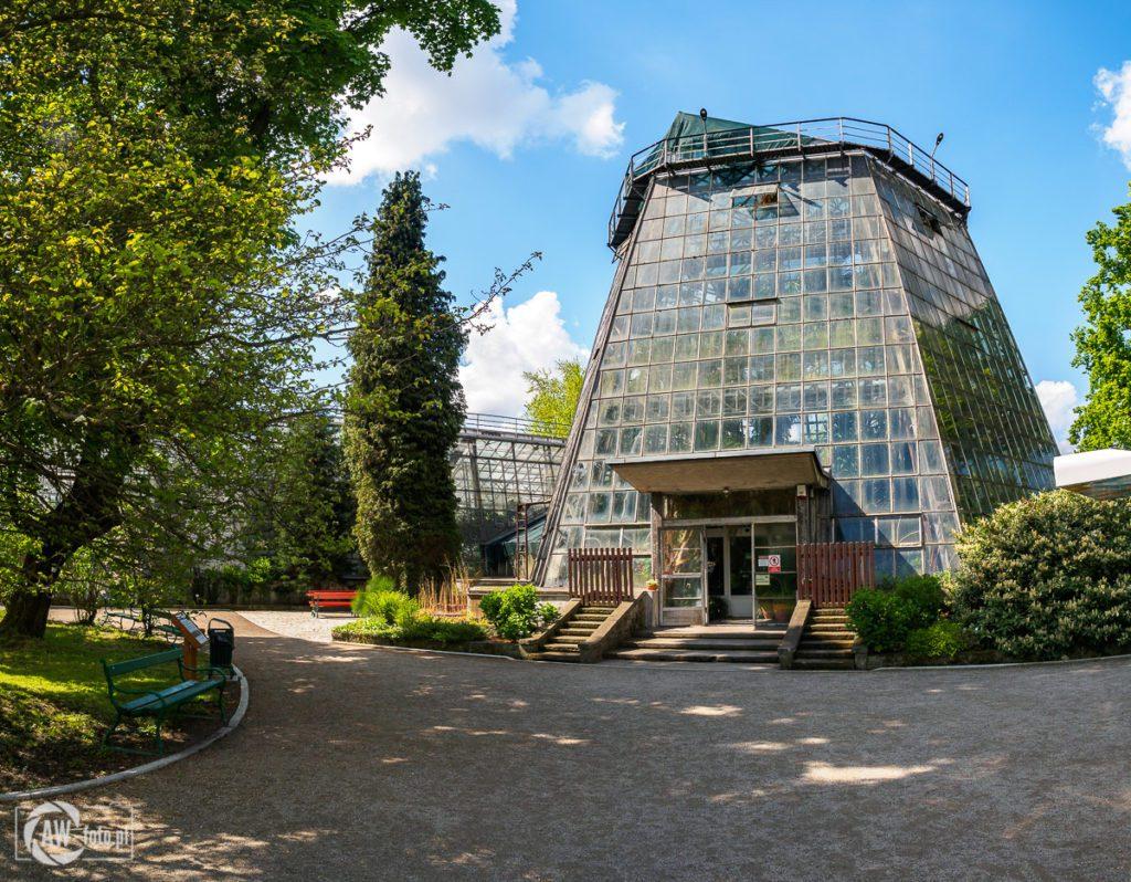 Ogród Botaniczny w Krakowie - szklarnia Jubileuszowa (palmiarnia)