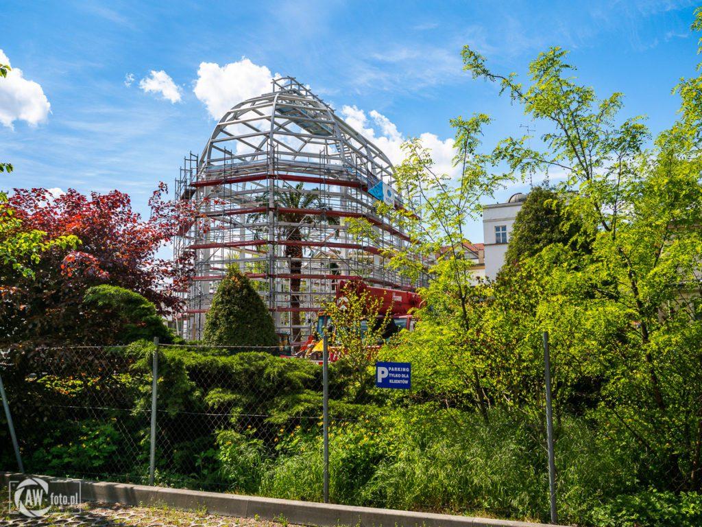 Ogród Botaniczny w Krakowie - szklarnia Victoria - palma