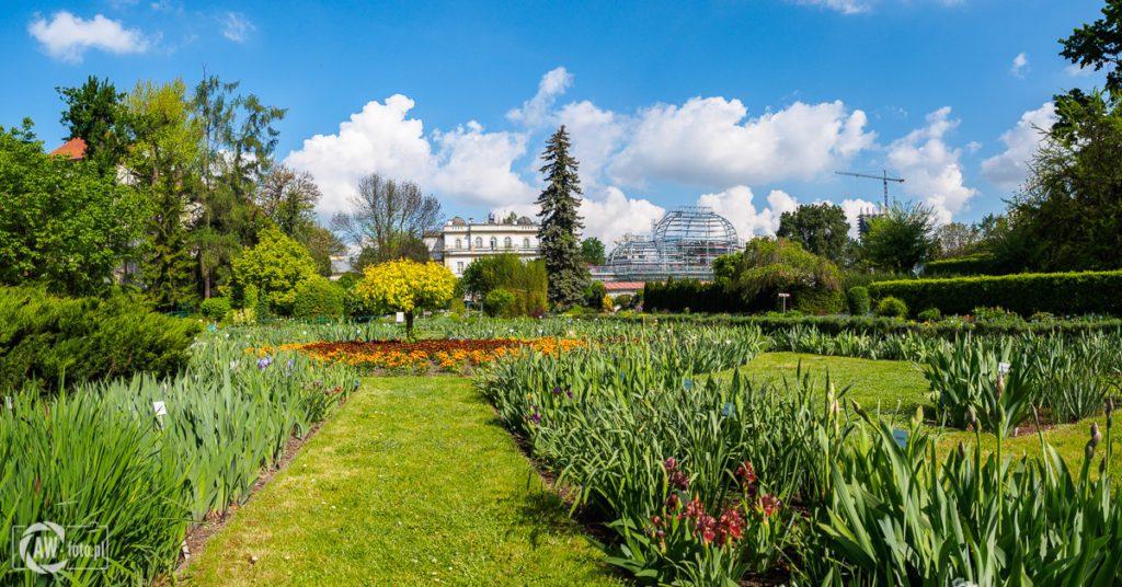 Ogród Botaniczny w Krakowie - widok na Muzeum