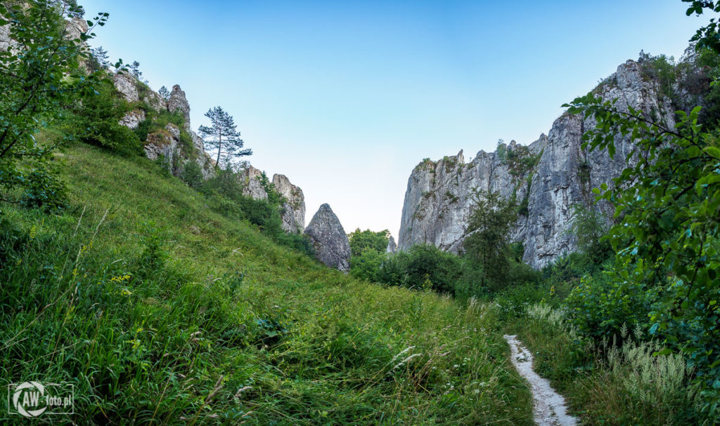 Brama Bolechowicka - mur Pokutników