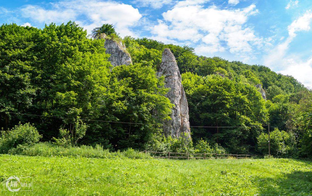 Dolina Będkowska - skała Iglica