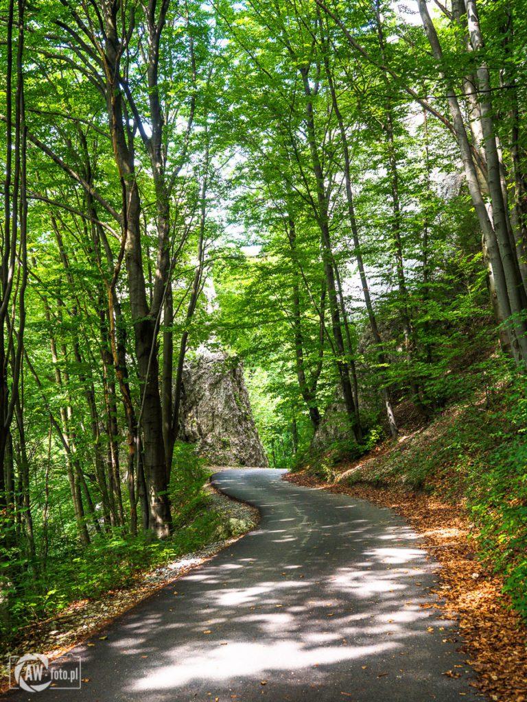 Dolina Będkowska - skały Czarcie Wrota