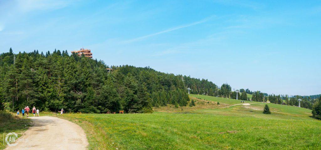 Wieża widokowa Krynica - Zdrój - droga na wieżę