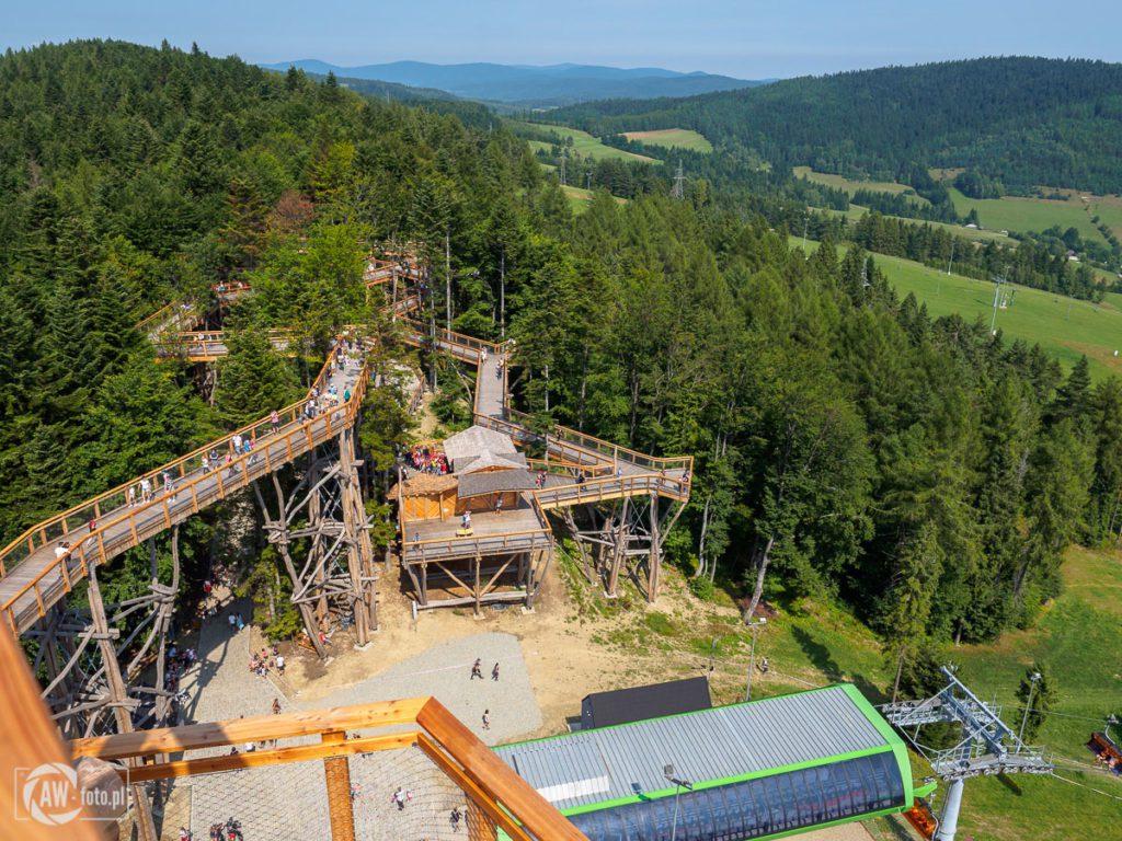 Wieża widokowa w Krynicy - Zdroju - panorama na Jaworzynę Krynicką - widok na ścieżkę w koronach drzew