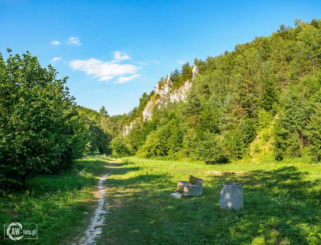 Dolina Kobylańska - miejsce do wypoczynku wśród skał