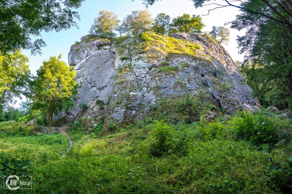 Dolina Kobylańska - skała Skalny Raj
