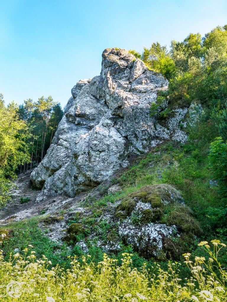 Dolina Kobylańska - skały