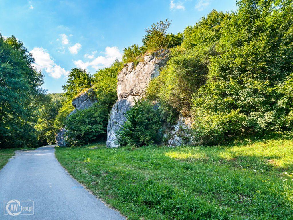 Dolina Kobylańska - skalne ostańce przy wejściu do doliny