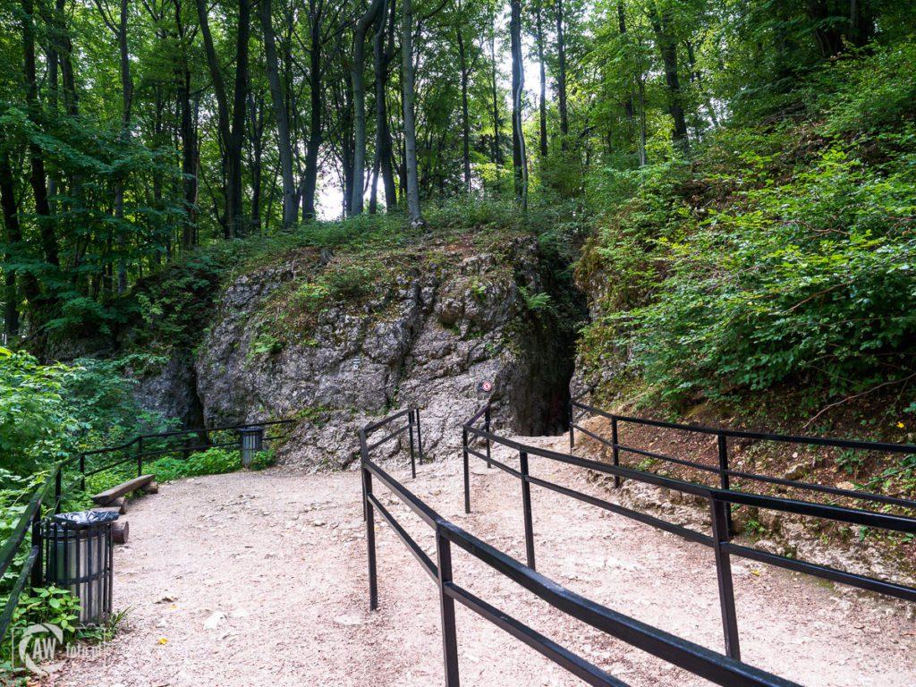 Grota Łokietka - dojście do jaskini