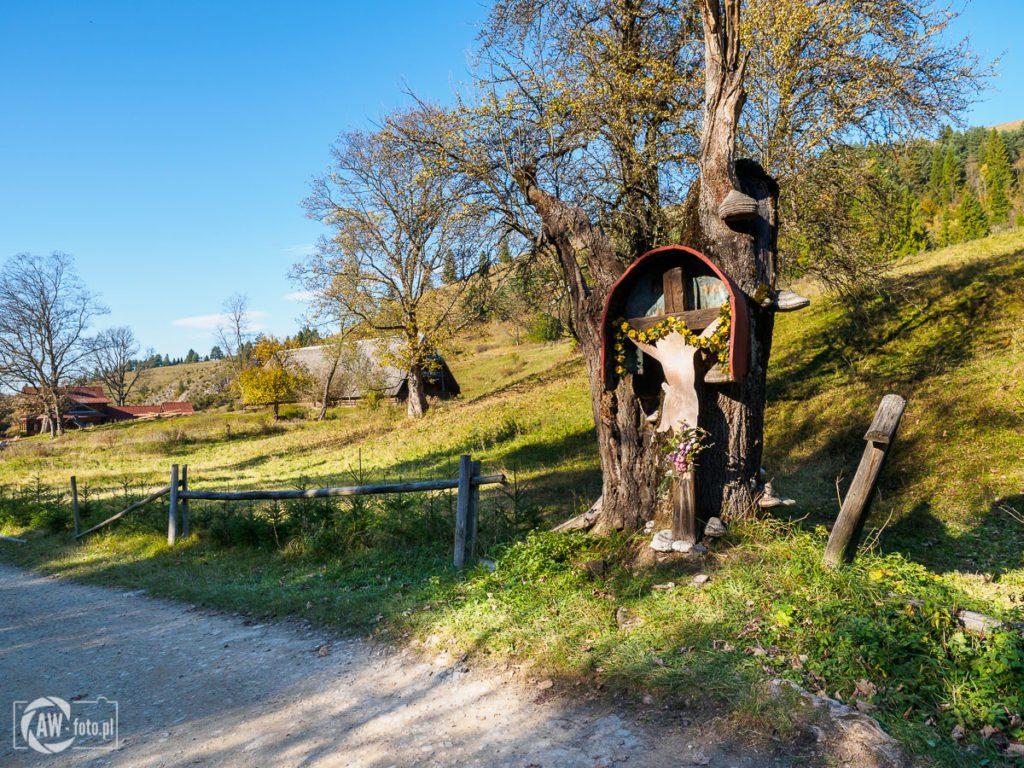 Rezerwat Biała Woda - łemkowska kapliczka z dawnej wsi Biała Woda