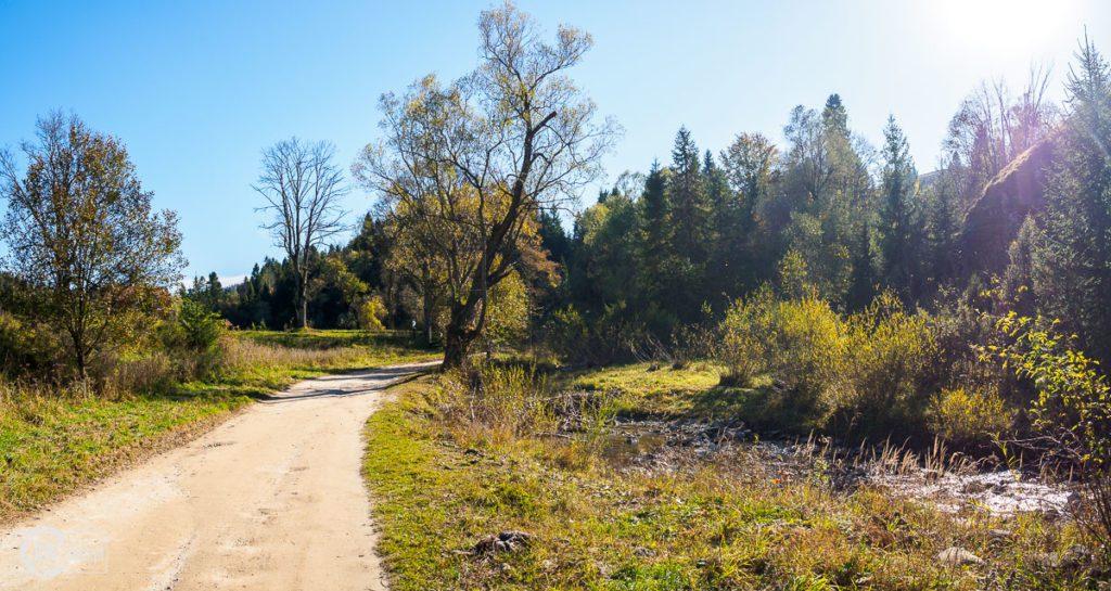 Rezerwat Biała Woda - droga wzdłuż Białej Wody