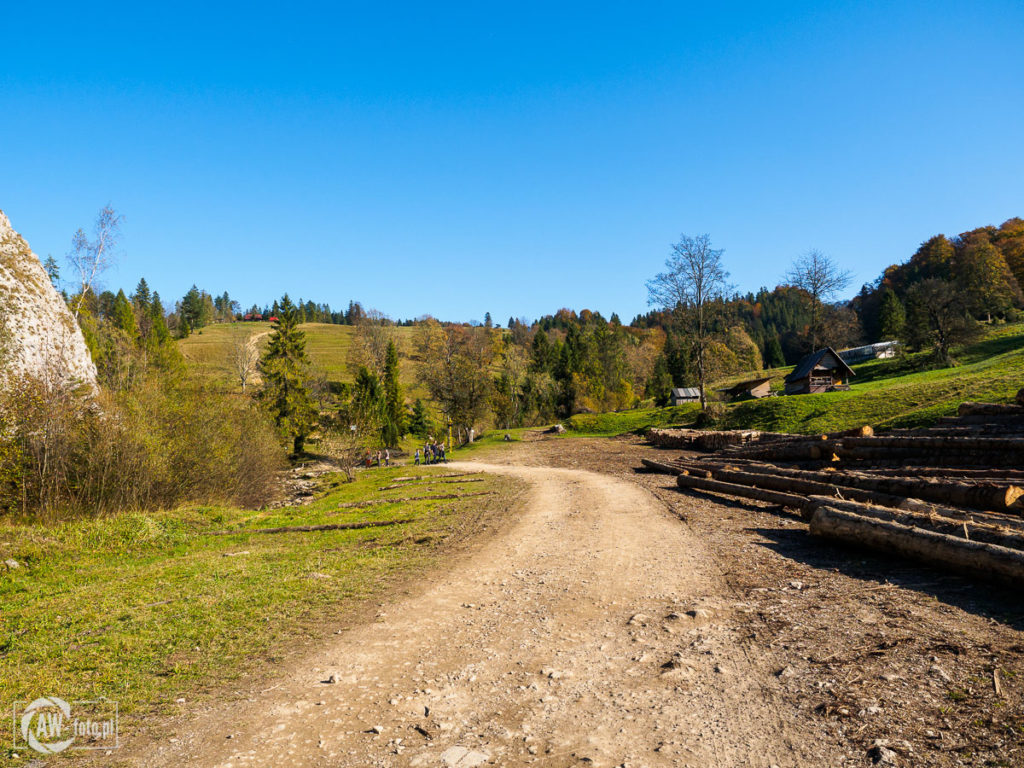 Rezerwat Biała Woda - podejście do Przełęczy Rozdziela