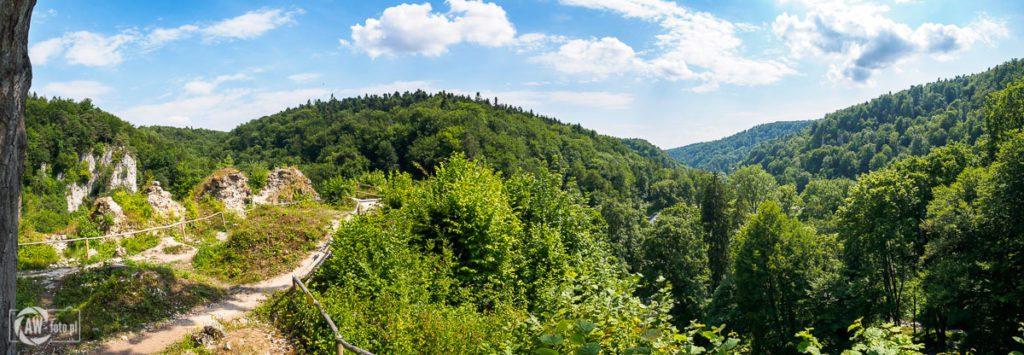 Ruiny zamku w Ojcowie - pozostałości murów