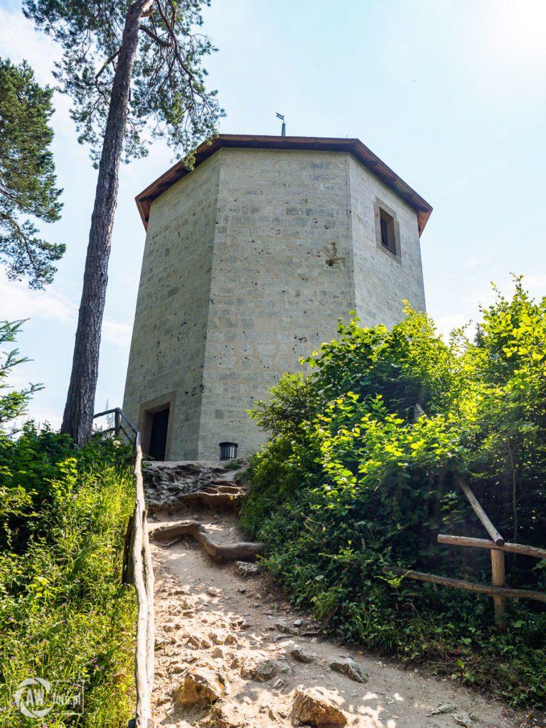 Ruiny zamku w Ojcowie - wieża
