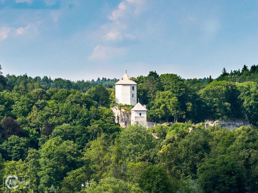 Zamek w Ojcowie - ruiny