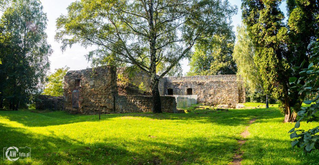 Ruiny zamku królewskiego w Nowym Sączu