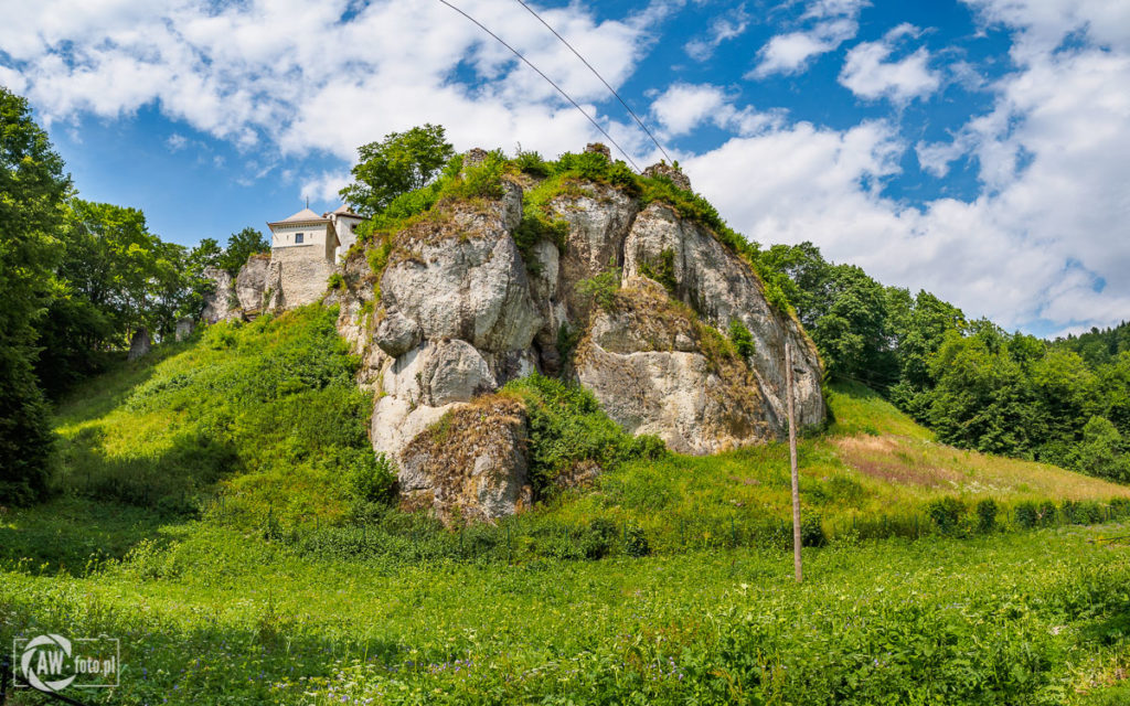 Wzgórzez z ruinami zamku w Ojcowie
