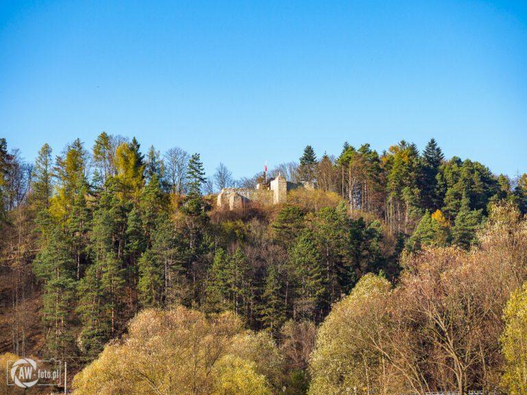 Panorama z zamkiem Baszta w Muszynie