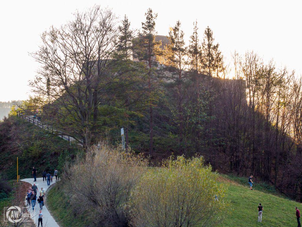 Widok na zamek w Rytrze zza drzew