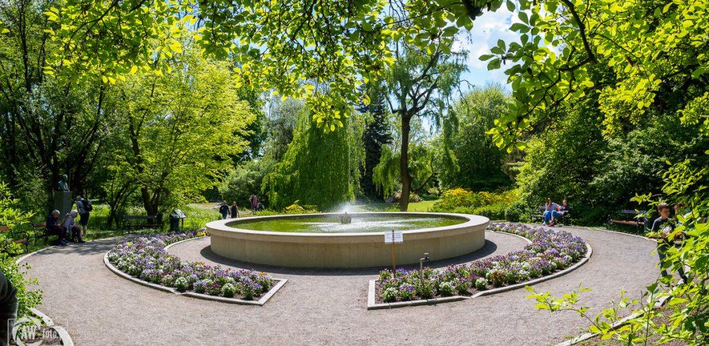 Ogród Botaniczny w Krakowie - fontanna