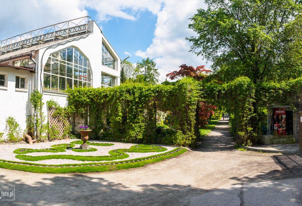Ogród Botaniczny w Krakowie - szklarnia Victoria