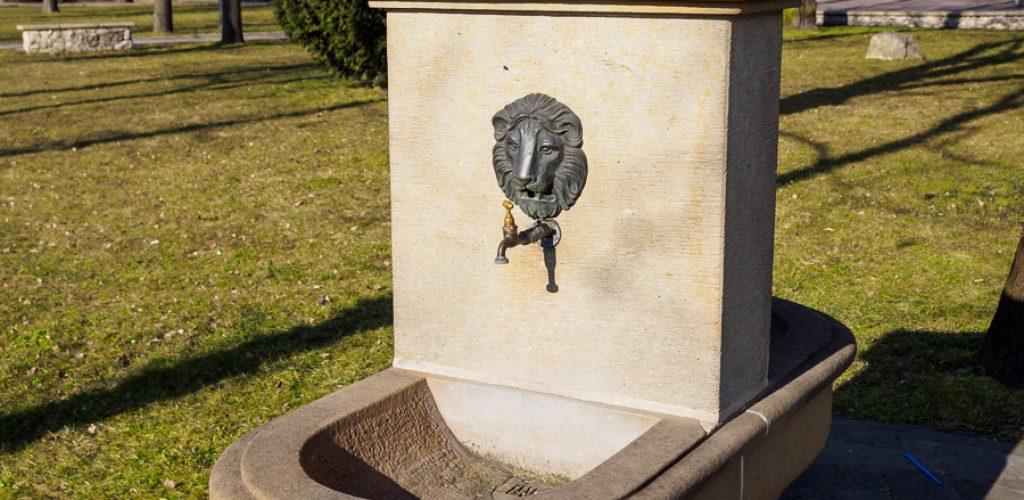 Ujęcie wody w parku w Niepołomicach